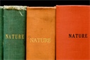 Image of Collocation No. 14 (Nature) Right Panel